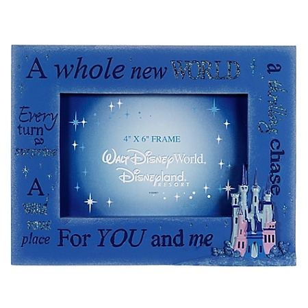 disney photo frame a whole new world cinderella castle - Disney Picture Frame