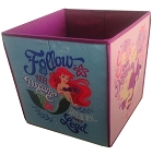 Disney Storage Bin - Princess - Follow Your Dreams