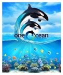 Sea World Throw Blanket - One Ocean Fleece - Shamu
