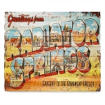 Disney Wall Sign - Radiator Springs - Cars