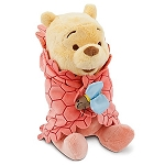 Disney's Babies Plush - Winnie the Pooh - Plush Toy and Blanket