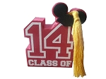 Disney Antenna Topper - 2014 Graduation - Class of 2014