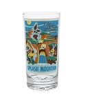Disney Tumbler Glass - Attraction Poster - Splash Mountain