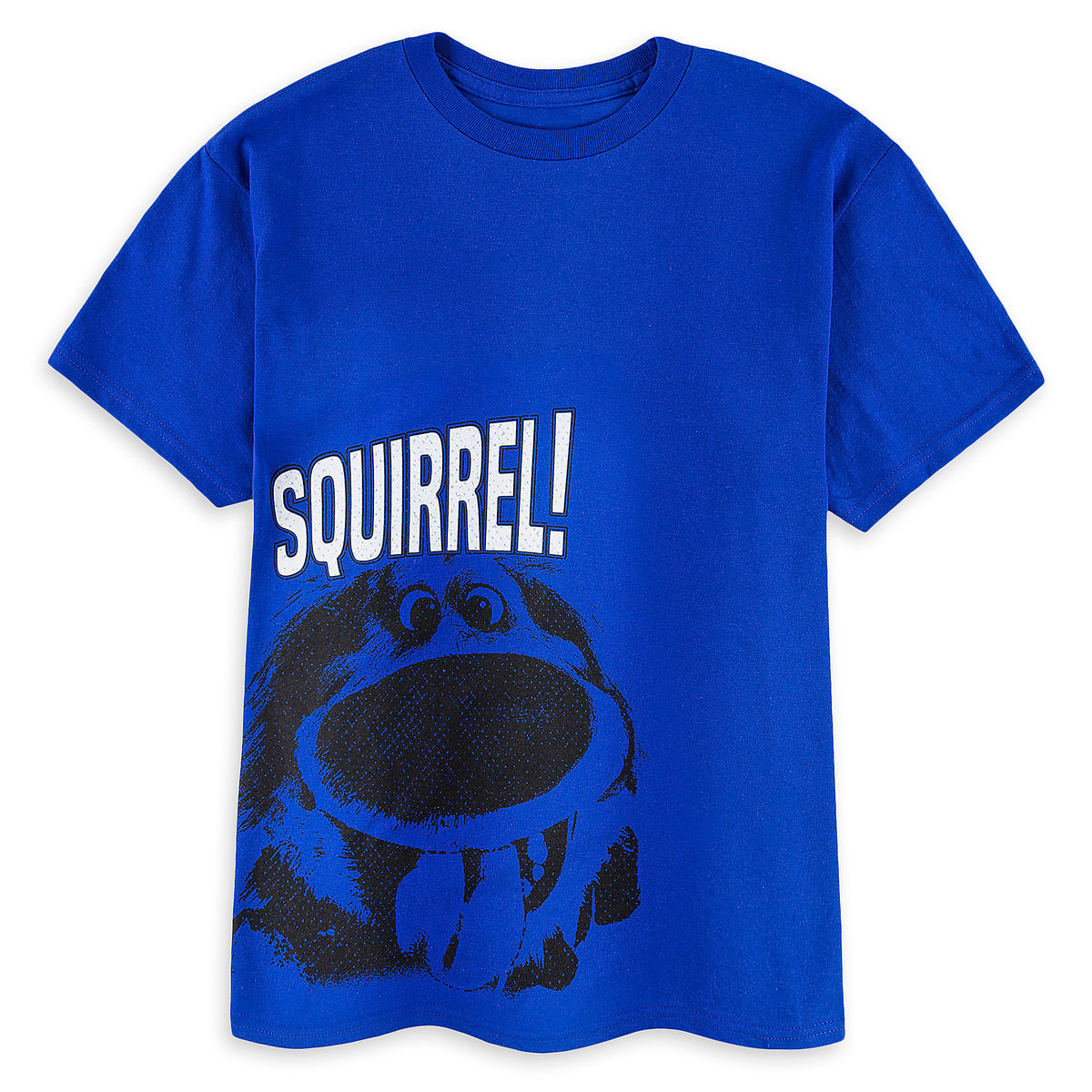 a0ffcd247b1 Disney Shirt for Boys - Dug T-Shirt - Squirrel - Blue