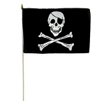 Disney Flag - Pirates of the Caribbean - Skull with Crossbones